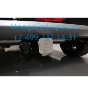 tcu00146-25090-2.jpg